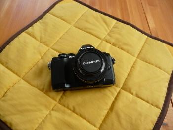 P1150894(1).JPG